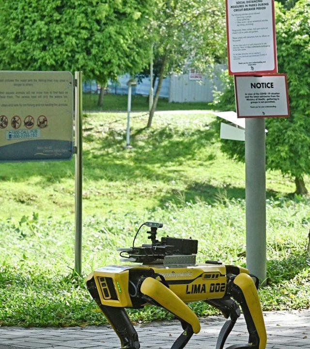 JIka uji coba dinyatakan berhasil, robot ini akan dilepas di berbagai tempat publik